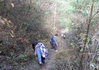 孩子带着志愿者去家里:他们面对的是一重又一重的大山。每天上学要走的将近三个小时的山路