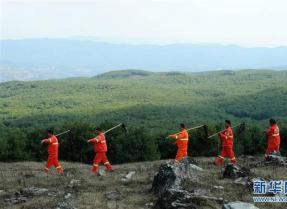 贵州沙子坡林场:三代护林员守护一片林海