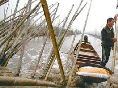 2011长江中下游旱情调查报告2:低水位的背后